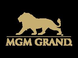 MGM Grand Vendor corporate events nice porta potty rentals